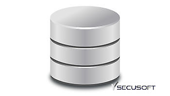 Al onze gebruikers een eigen database SecuSoft Software Beveiligingsbedrijven